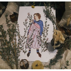 Ilustración original de la carta : Laurel y Cicuta
